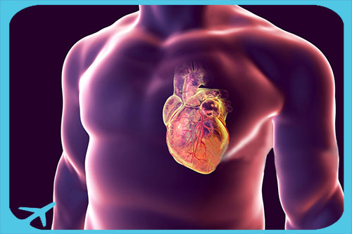 أفضل جراحي القلب الايرانيين ذوي الخبرة العالية والزمالات في أمريكا وأوريا | آريا مدتور