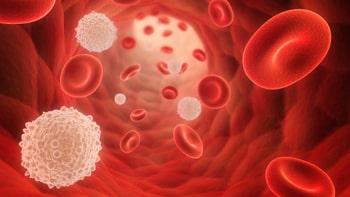 علاج سرطان الدم في ايران