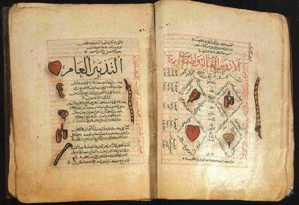 the Canon of Medicine, Avicenna