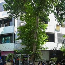 Mustafa Hospital in Iran Tehran