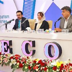 Maria D. Georgia and Hadi Shajari speking at the 2nd ECO Confobition on Health Tourism