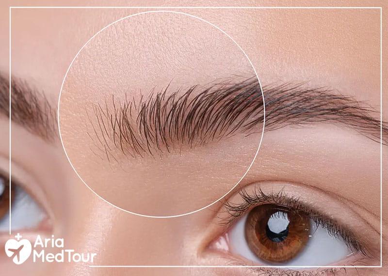 a woman eyebrow before microblading