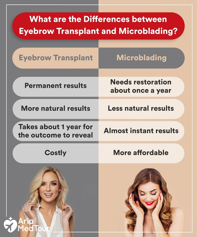 an infographic showing the differences between eyebrow transplant and microblading